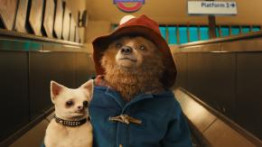 Paddington with a dog