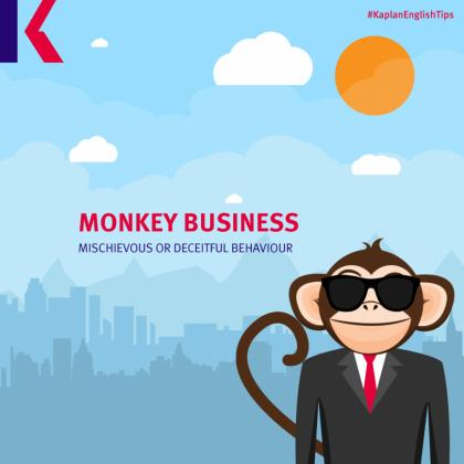 monkey animal idiom