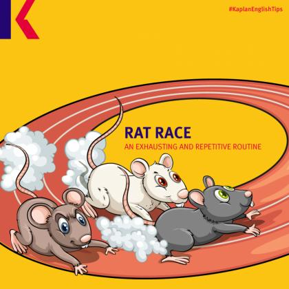 rat animal idiom