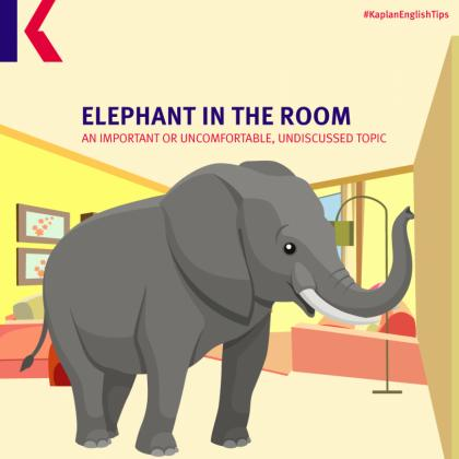 elephant animal idiom