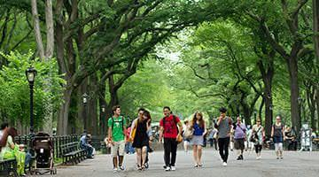 Kaplan students in Central Park, New York