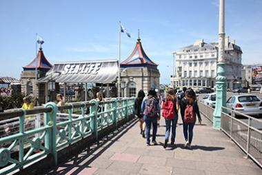 Brighton city image 10